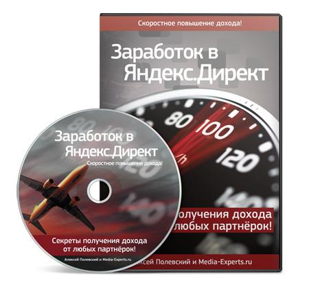 Видеокурс «Заработок в Яндекс.Директ». Алексей Полевский