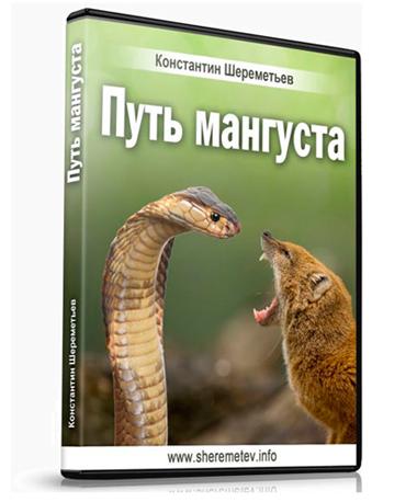 Новый аудио-курс Константина Шереметьева «Путь мангуста. Успех благодаря страху»