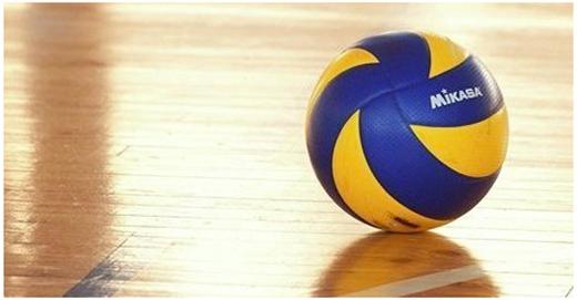Ставки на волейбол, заработок на ставках на волейбол вебинар скачать бесплатно